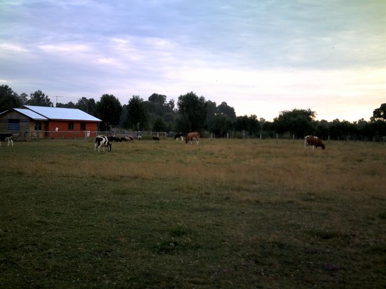 Fotos de parcela rural - Fotos de parcelas ...