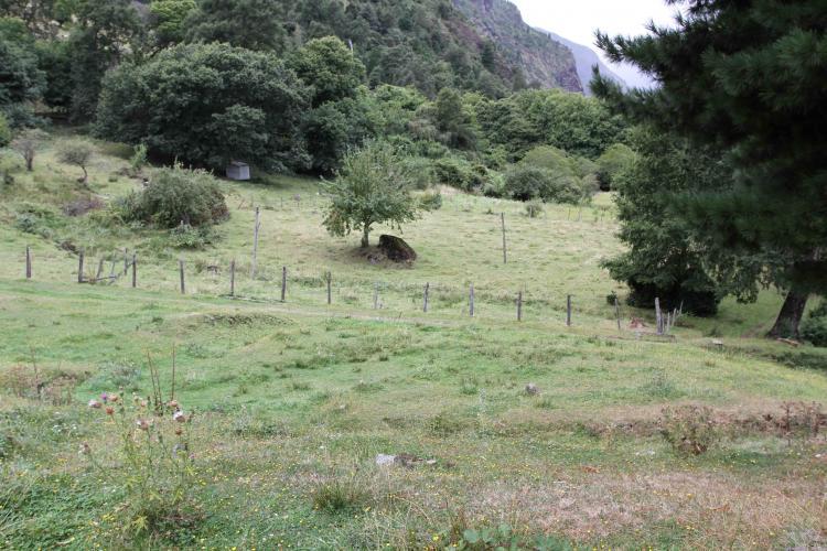 Fotos de parcelas lago colico ix regi n araucan a - Fotos de parcelas ...
