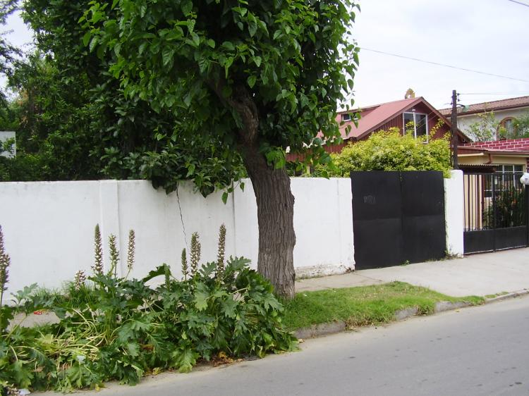 casa a la venta villa alemana
