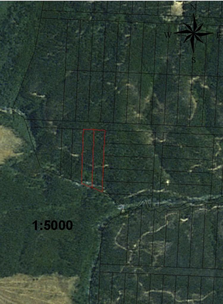 Arriendo terreno 4 hectareas entre constitucion y talca for Viveros en talca