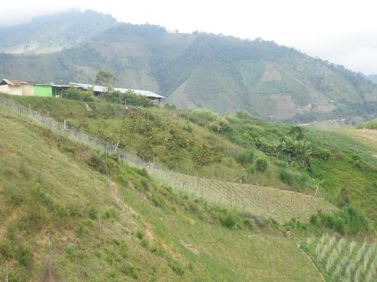 Vende hermosa finca via a malaga 9 km fiv4204 for Gas natural malaga