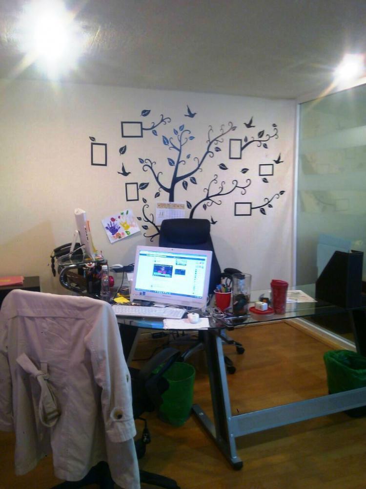 Elegantes oficinas totalmente equipadas en plaza carso for M bankia es oficina internet