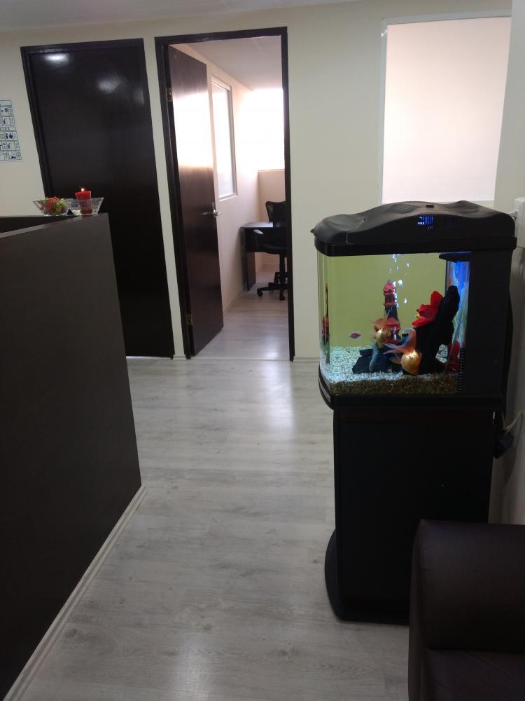 Oficina virtual edr220619 for Oficina virtual telefono