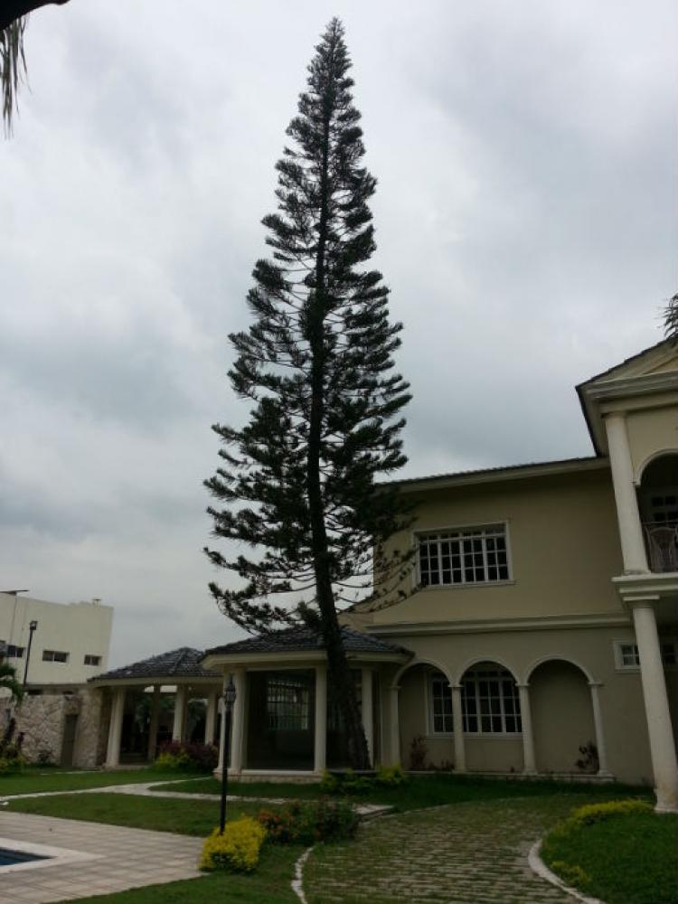 Espectacular mansion en puerto azul guayaquil ecuador cav364 for Casa a new york affitto