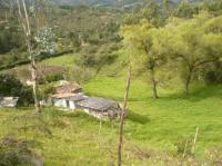 Agricola en Venta en colombia-antioquia-guarne Tocopilla