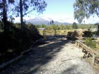 Terreno en Venta en Camino Ensenada, Sector Colonias Puerto Varas