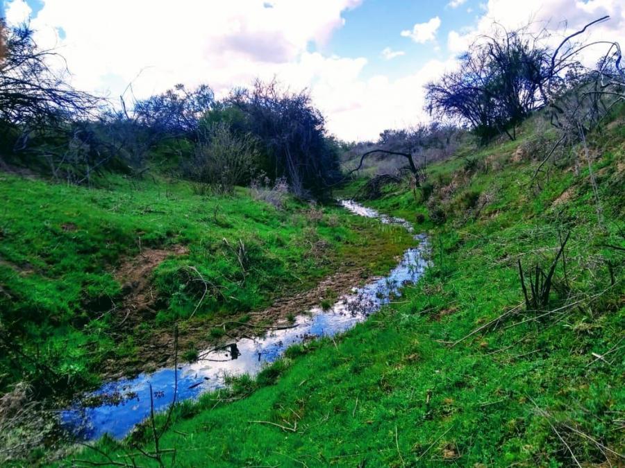 Foto Terreno en Venta en Centro, Litueche, Cardenal Caro - $ 12.990.000 - TEV108757 - BienesOnLine