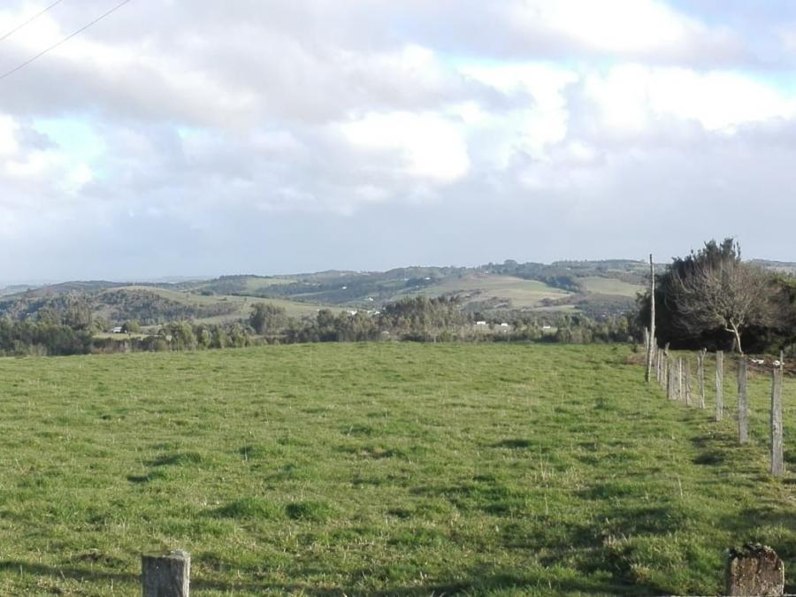 Foto Agricola en Venta en Los Muermos, Llanquihue - $ 425.000.000 - AGV98541 - BienesOnLine