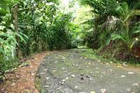 Finca en Venta en Chires, Puriscal, San Jose, Costa Rica, Puriscal