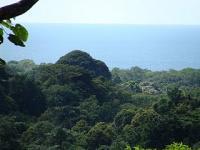 Finca en Venta en Refugio de vida silvestre Gandoca-Manzanillo Cahuita
