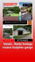 Bodega en Venta en  Guápiles