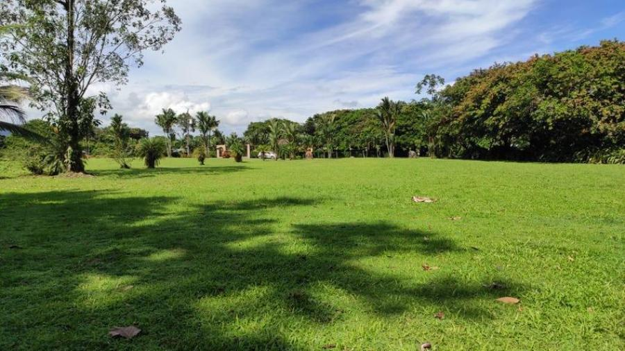 Foto Terreno en Venta en Guapiles, Pococ�, Lim�n - ¢ 60.000.000 - TEV35956 - BienesOnLine