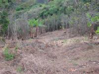 Terreno en Venta en jericó Desamparados
