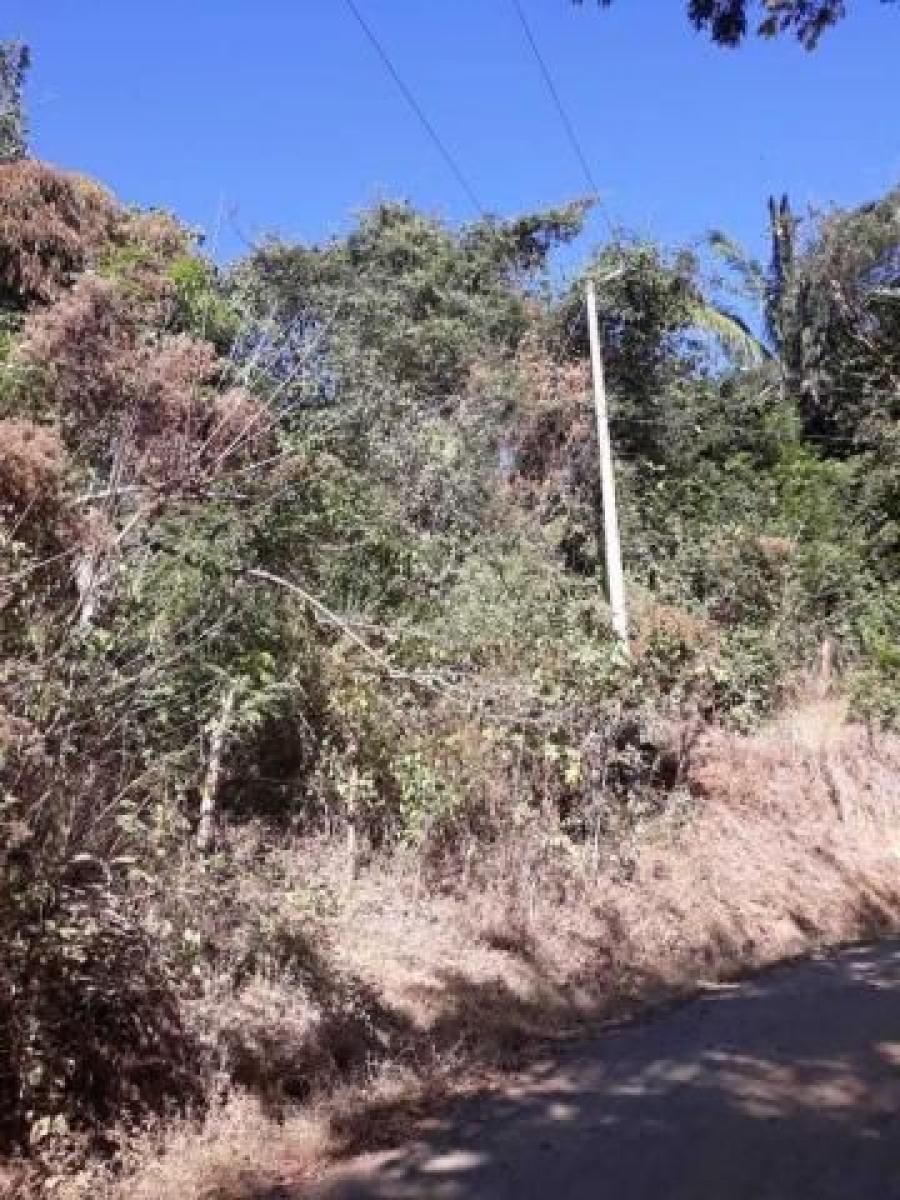Foto Terreno en Venta en SanJuanillo, Santa Cruz, Guanacaste - U$D 45.000 - TEV24736 - BienesOnLine