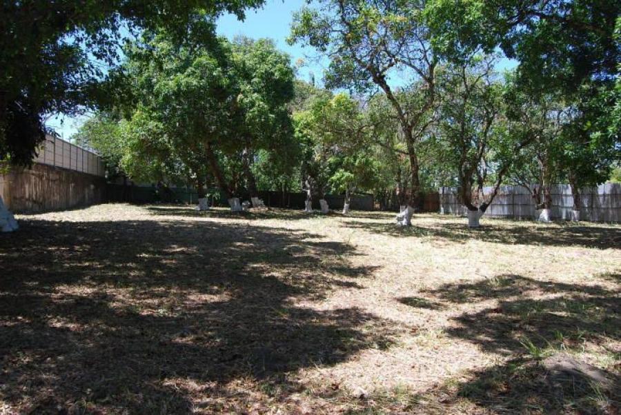 Foto Terreno en Venta en SantaAna, Santa Ana, San Jos� - U$D 614.000 - TEV24781 - BienesOnLine