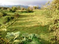 Terreno en Venta en  Moravia