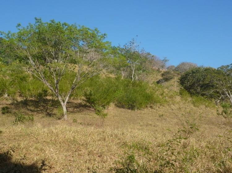 Foto Finca en Venta en Caimital, Nicoya, Guanacaste - 8 hectareas - U$D 125.000 - FIV6795 - BienesOnLine