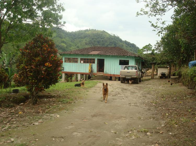 Foto Hacienda en Venta en Nanegal, El Bosque, Pichincha - 72 hectareas - U$D 350 - HAV8883 - BienesOnLine