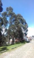 Terreno en Venta en Conocoto Quito