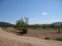 Finca en Venta en  Campo de Mirra/El Camp de Mirra