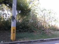 Terreno en Venta en LAS FINCAS Jiutepec