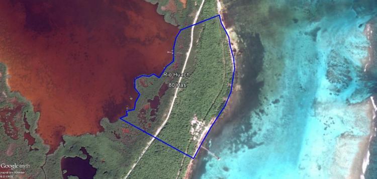 Terreno En Venta En Mahahual Quintana Roo 79 Hectareas U D 60 000 000 Tev165970 Bienesonline