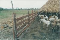 Rancho en Venta en  Presidente Juárez