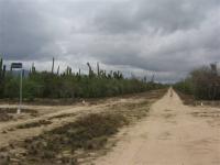 Terreno en Venta en  El Carrizal