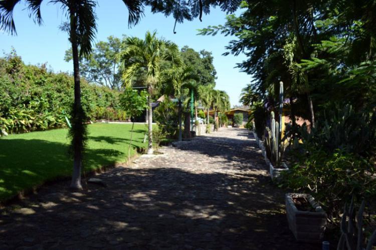 Foto Casa Terreno Finca Huerta con todos los Servicios FIV188459