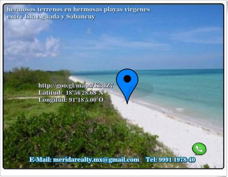 Lotes En Playas Virgenes Entre Isla Aguada Y Sabancuy