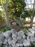 Terreno en Venta en caucel pueblo MERIDA