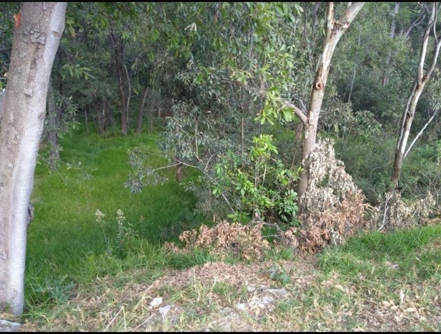 Foto Terreno Real de Valle Escondido TEV266007