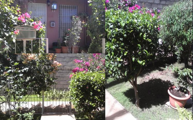 Foto Casa en Venta en La Pintora., Le�n, Le�n - U$D 26.000 - CAV180 - BienesOnLine