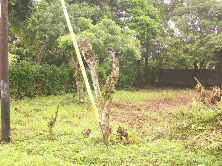 Foto Terreno en Venta en Pacora, Pacora, Panam� - U$D 15.000 - TEV1809 - BienesOnLine