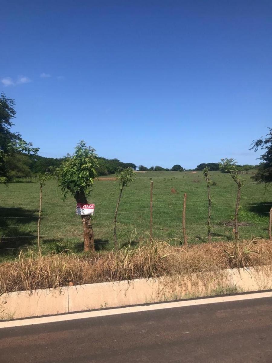 Foto Terreno en Venta en Monagrillo, Herrera - 6 hectareas - U$D 30 - TEV33494 - BienesOnLine