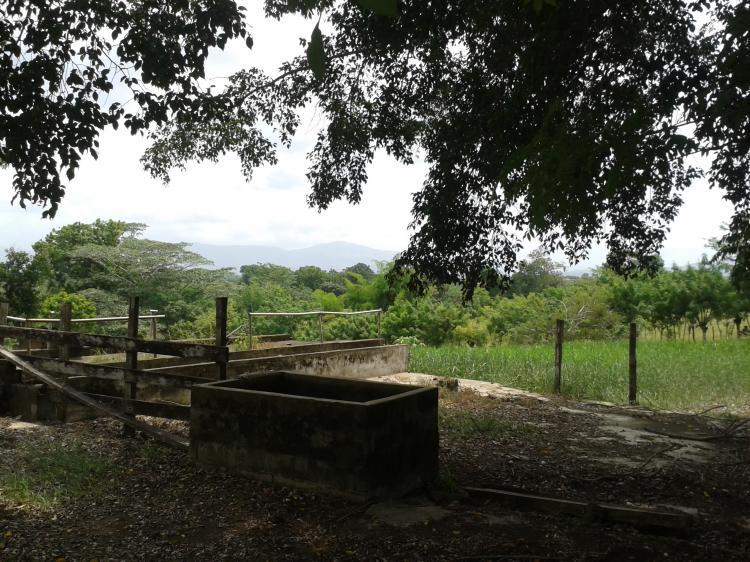 Foto Terreno en Venta en Pacora, Panam� - 11 hectareas - TEV2830 - BienesOnLine