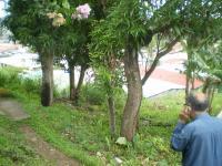 Terreno en Venta en  Río Abajo