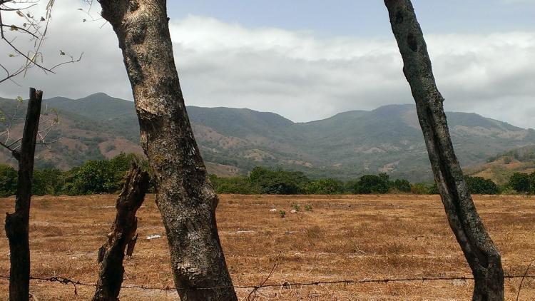 Foto Terreno en Venta en Utiv�, Pacora, Panam� - 81 hectareas - U$D 8.050.000 - TEV5997 - BienesOnLine