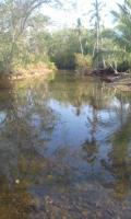 Terreno en Venta en Mariato Llano del Catival o Mariato