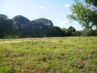 Terreno en Venta en Coloncito Cabuya