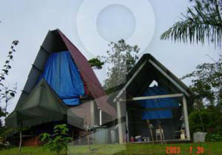 Foto Terreno en Venta en 24 de Diciembre, Pacora, Panam� - 87 hectareas - TEV5016 - BienesOnLine