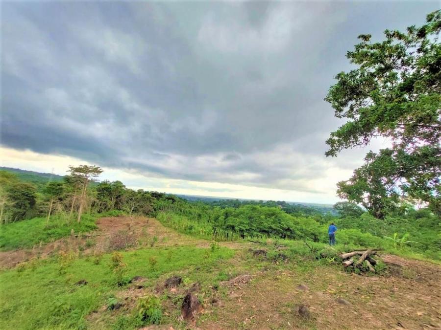 Foto Terreno en Venta en Las Ma�anitas, Tocumen, Panam� - U$D 300.000 - TEV42956 - BienesOnLine