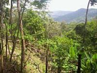 Terreno en Venta en Villa Lobos Pedregal