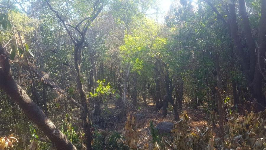 Foto Terreno en Venta en Rio Ceballos, C�rdoba - 23000 hectareas - TEV110732 - BienesOnLine