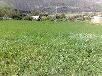 Terreno En Andabamba Tev5331