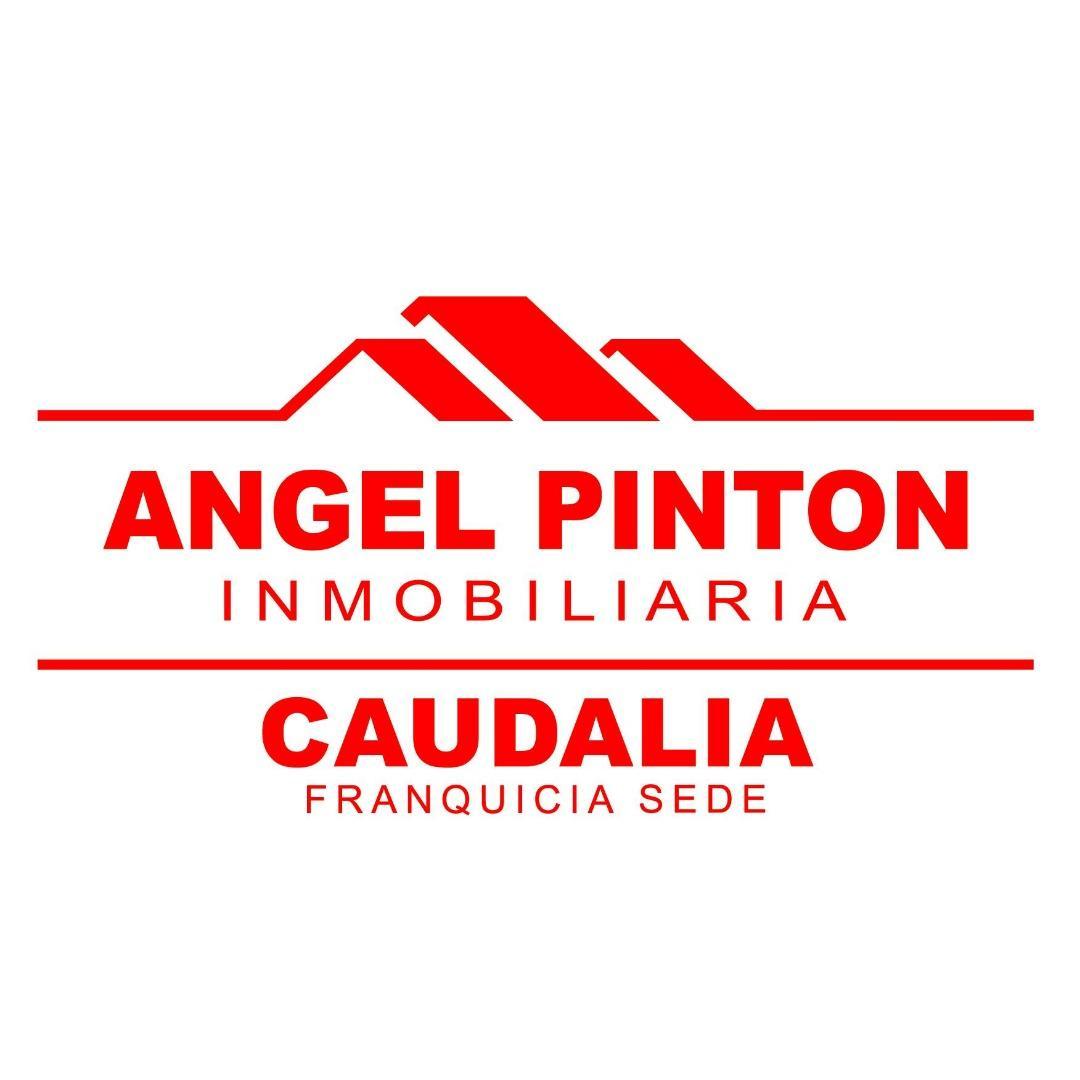 ANGEL PINTON INMOBILIARIA SEDE CAUDALIA