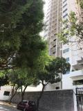 Apartamento en Alquiler en SAN JOSE Valencia