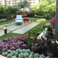Foto 15 Apartamento en Venta en Santa Rosa de Lima