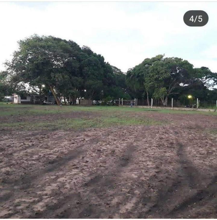 Foto Finca en Venta en Ciudad Guayana, Bol�var - 2 hectareas - U$D 9.000 - FIV150945 - BienesOnLine