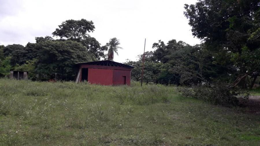 Foto Finca en Venta en Ciudad Guayana, Bol�var - 2 hectareas - U$D 9.500 - FIV150749 - BienesOnLine